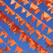 Koninginnedag 2013